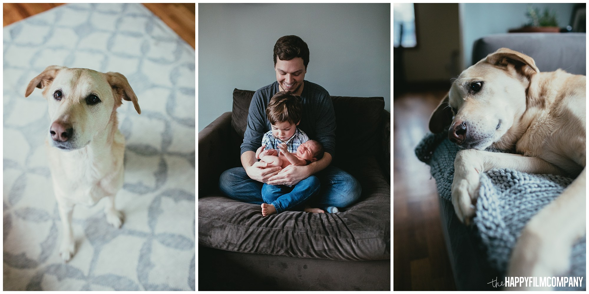 the Happy Film Company - Seattle Newborn Photographer - dog family photos father baby