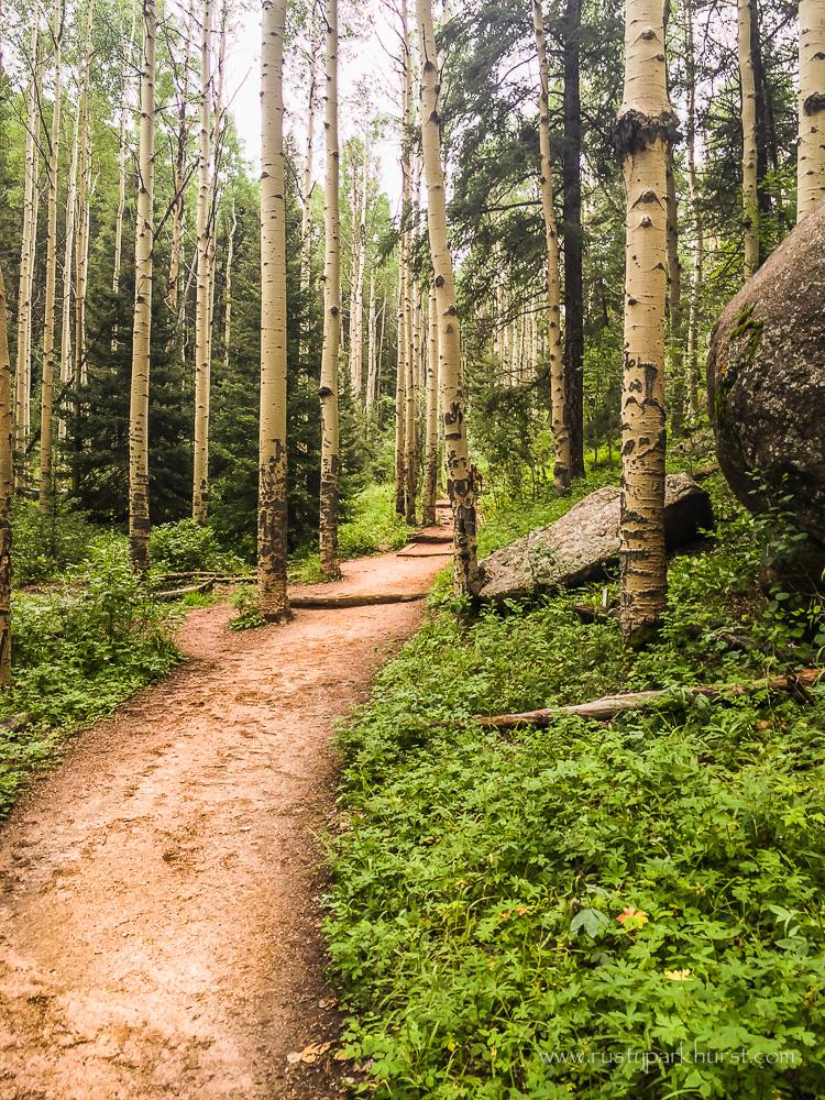 Devil's Head Trail