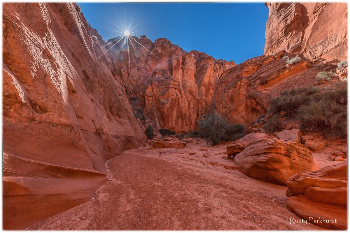 Canyon X Sunburst