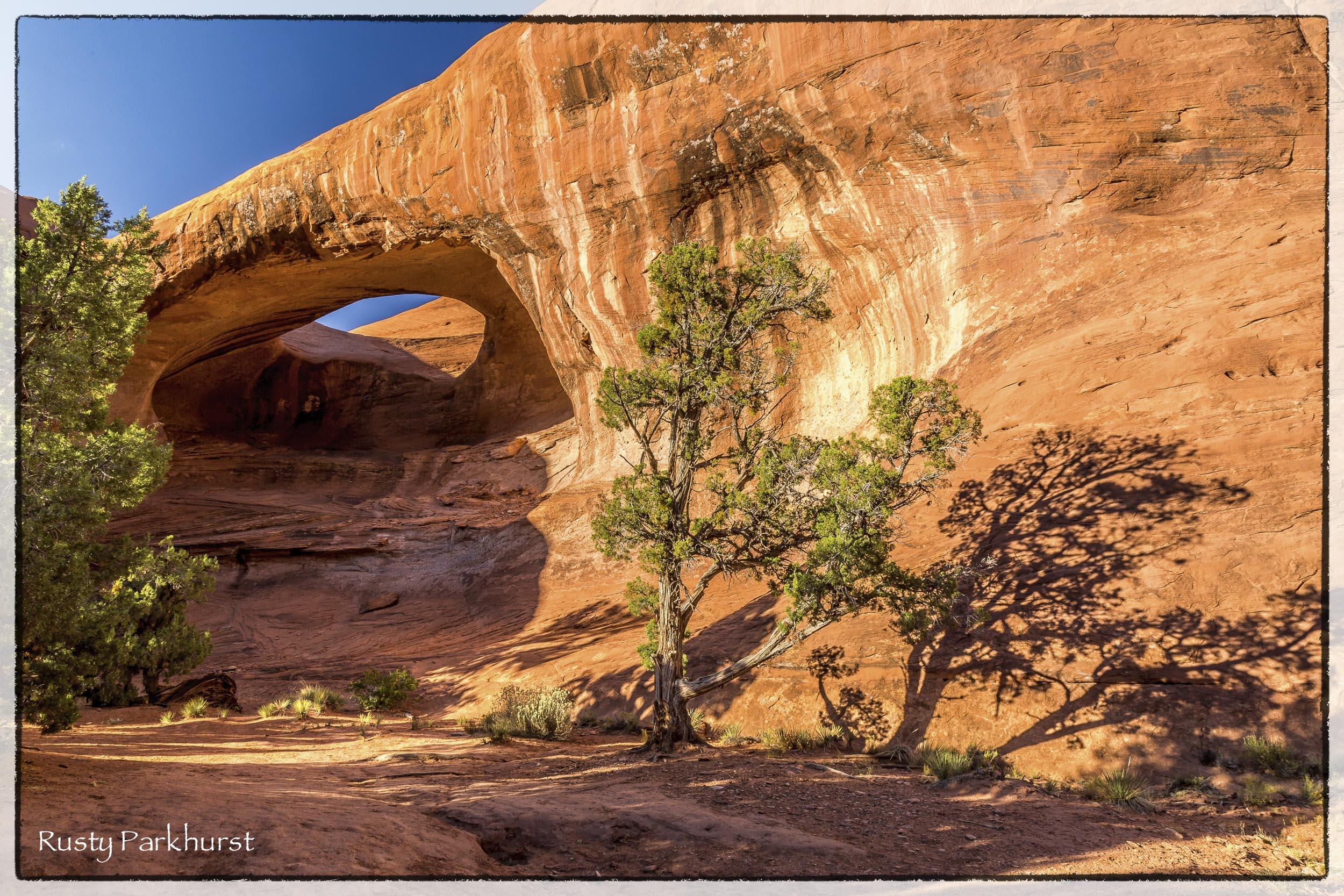 Stout Arch
