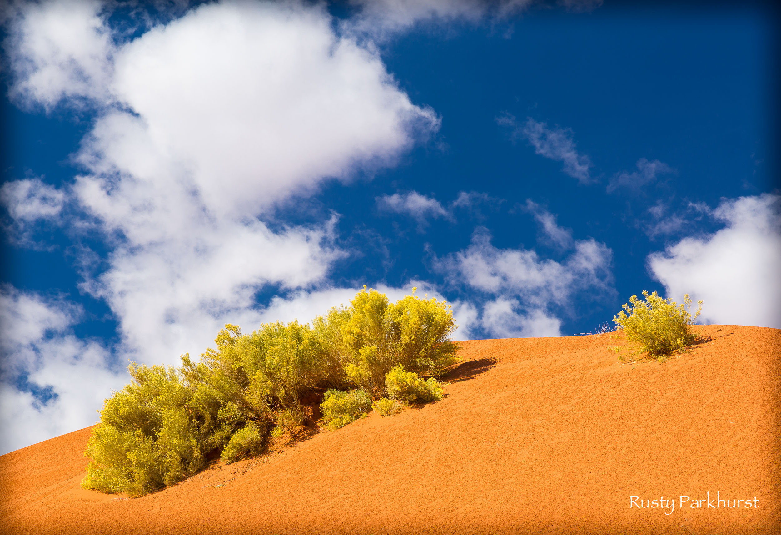 Dune Color