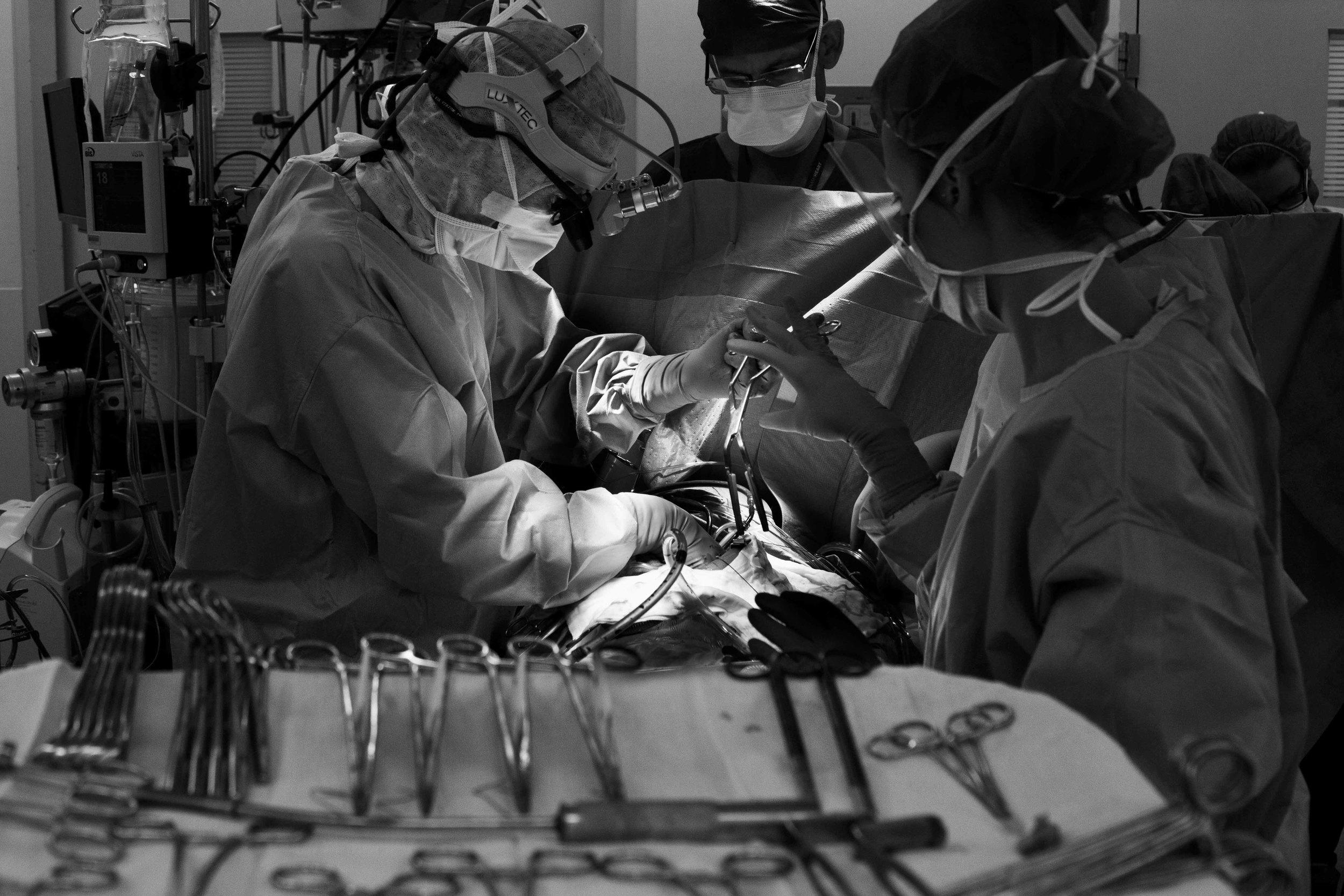 ETHF Lucas operation-9.jpg
