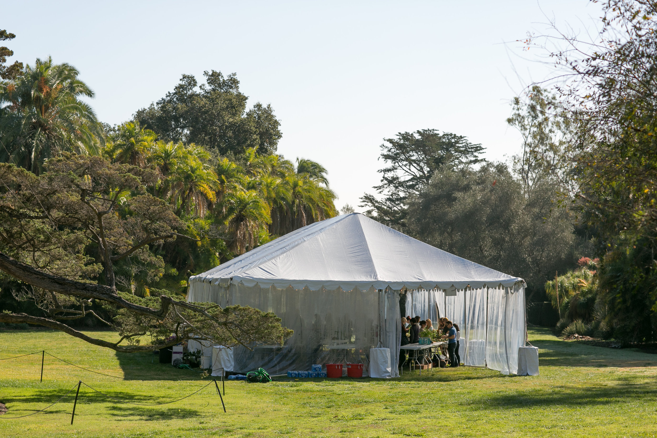 Our design tent at Lotus Land
