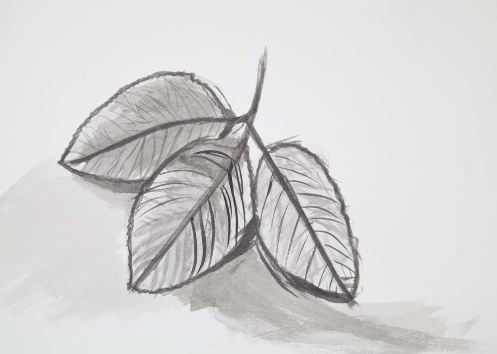 drawing_5180.jpg