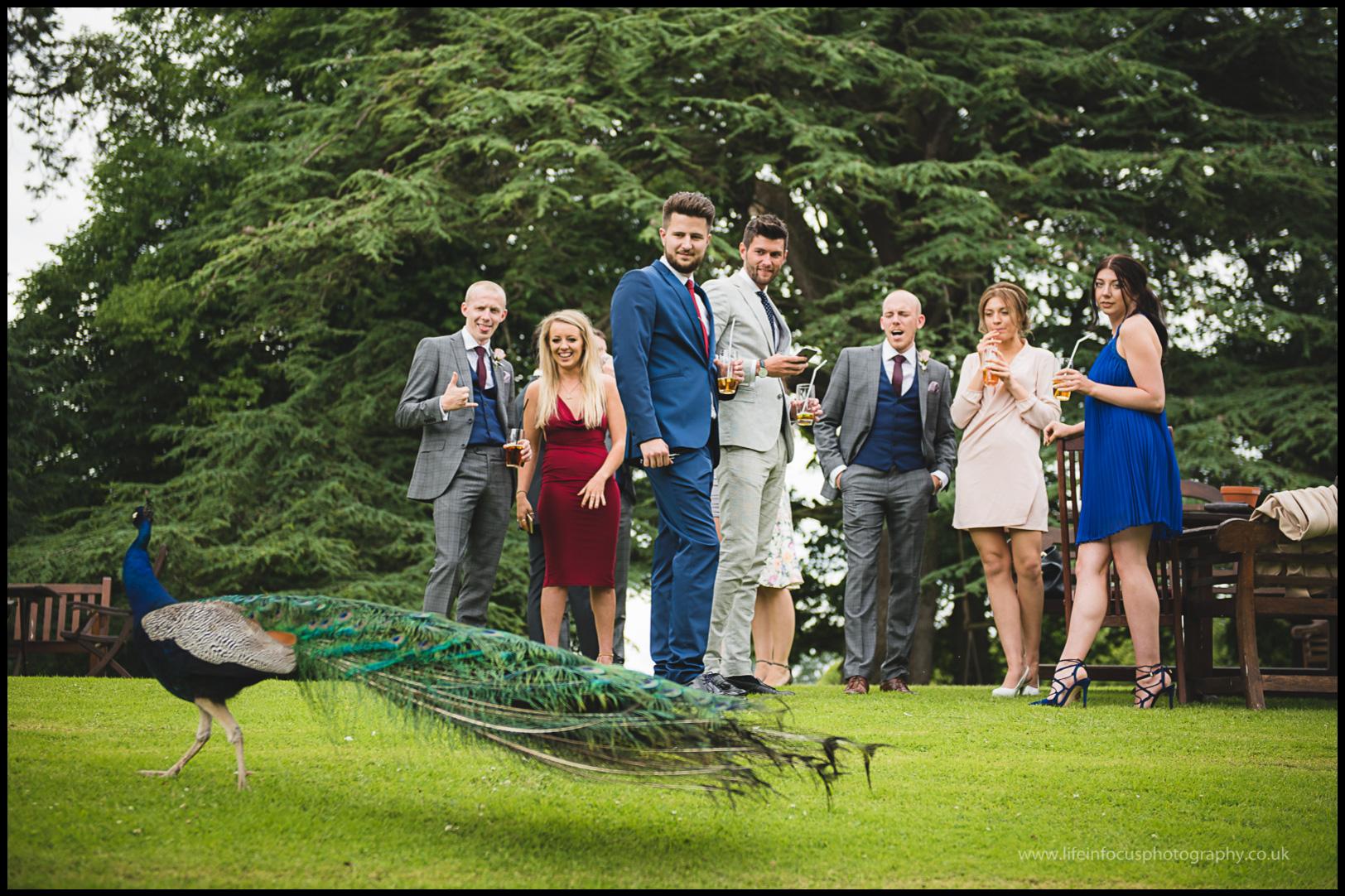maunsel house wedding