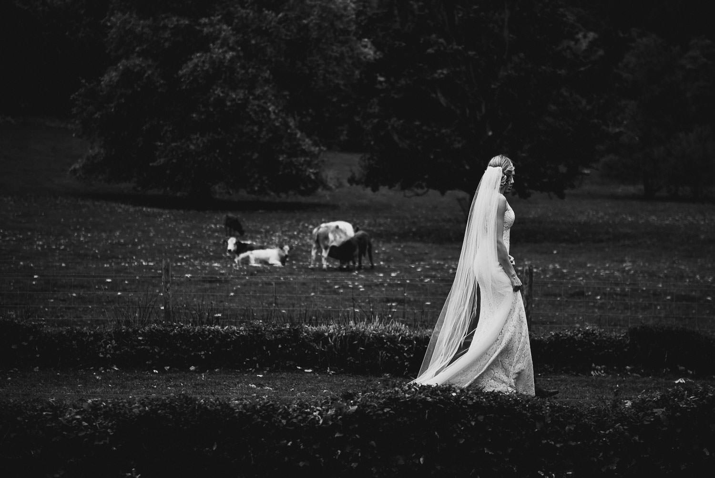 crowcombe-court-wedding-photography-36.jpg