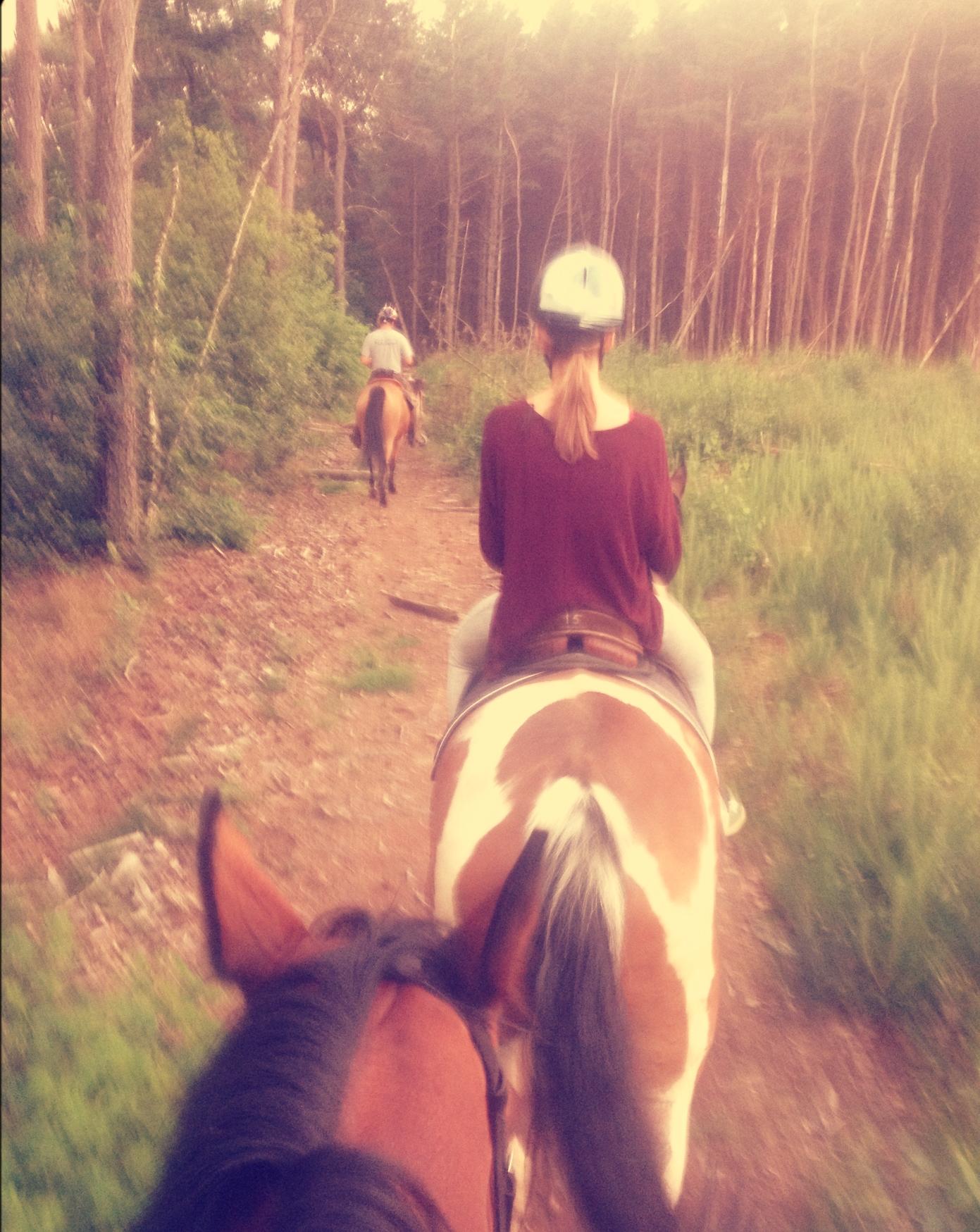 Nikki te paard door de bossen