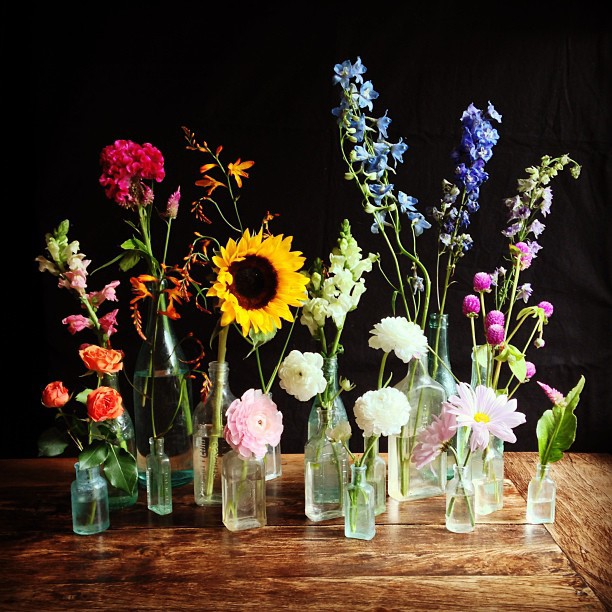 Flower_still_life-copyright-Amy_Lind