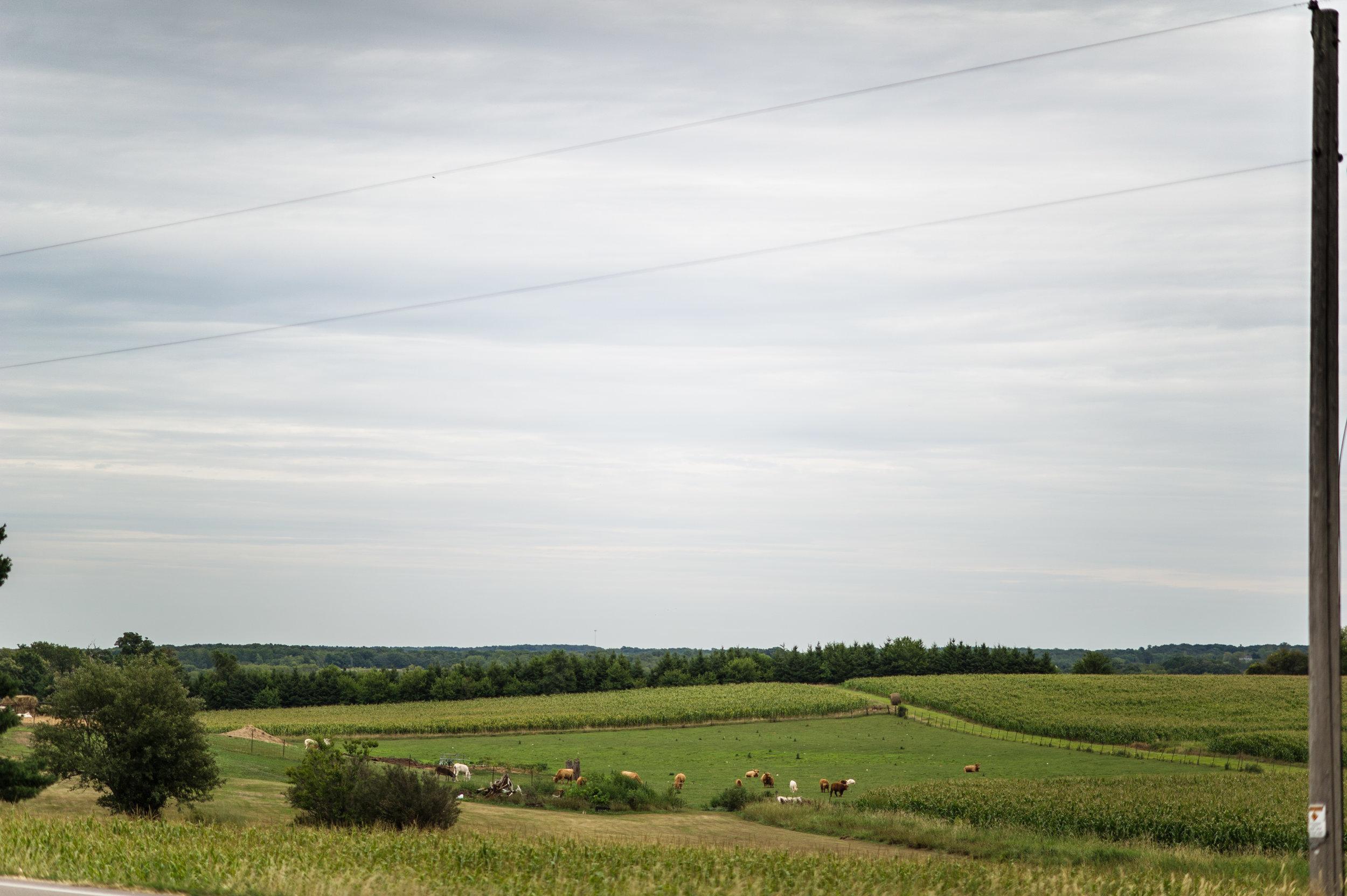 2012-08-12.oitf-4304.jpg