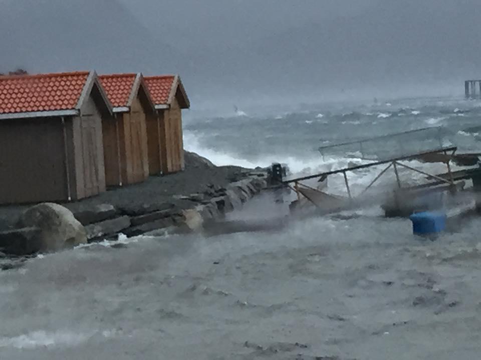 Foto: Arnt Olav Dahl