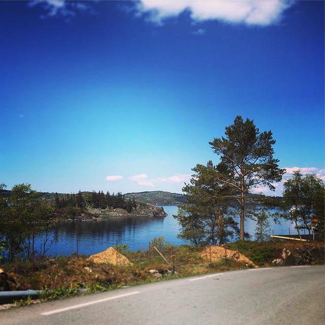 Vakker utsikt langs vegen ned til ferjekaien etter to ryddedugnadar denne veka!