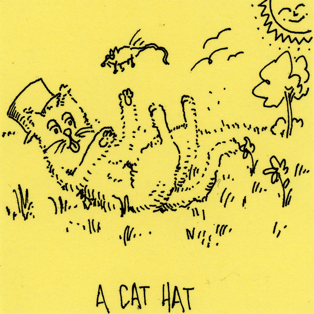 a cat hat.jpg