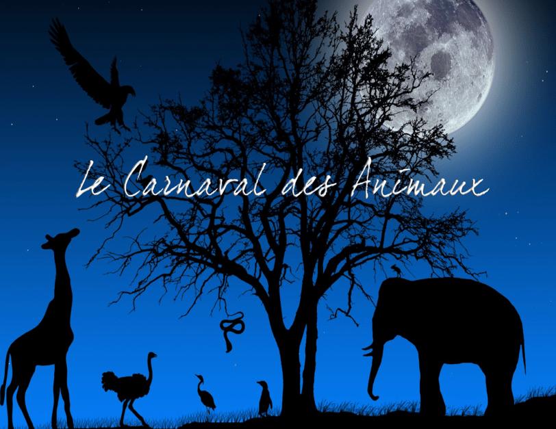 Le+Carnaval+des+Animaux+1-min.png