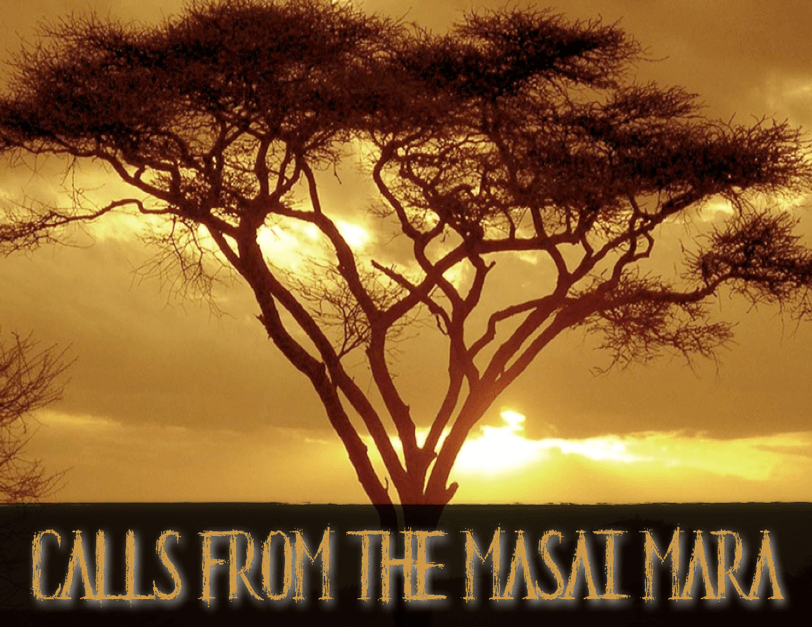 Calls+from+the+Masai+Mara+1.png