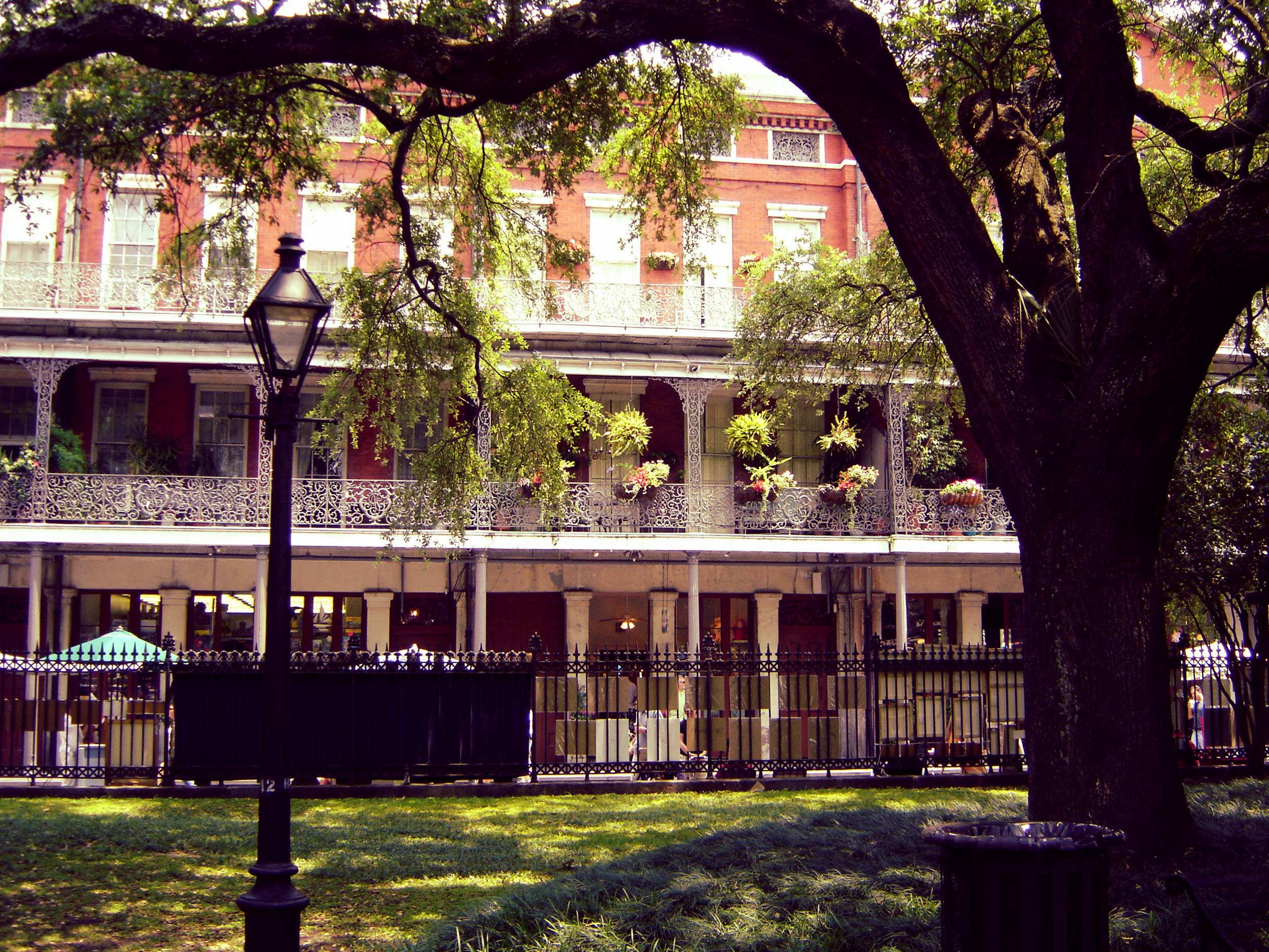 Sweeping trees and wrought iron balconies are the epitome of New Orleans.