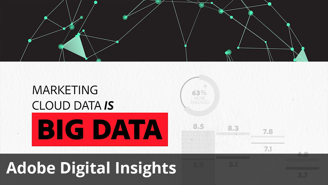 Adobe Digital Insights