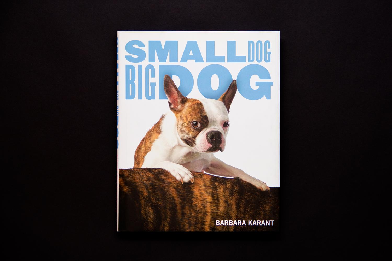 Small Dog Big Dog The Grillo Group Inc