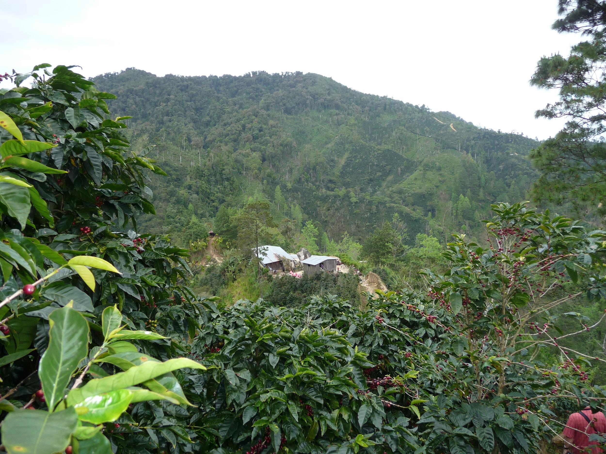Los Congos View from top Casa.jpg