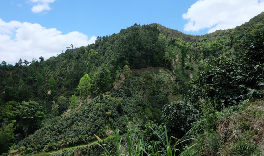 Los Congos border line.png
