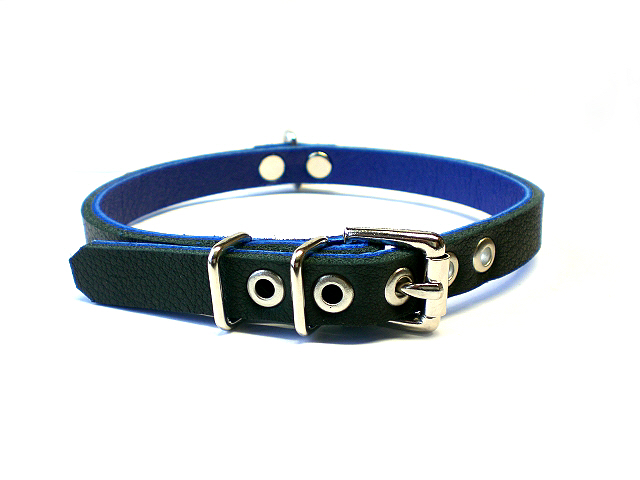 standard buckle - black w/blue inlay