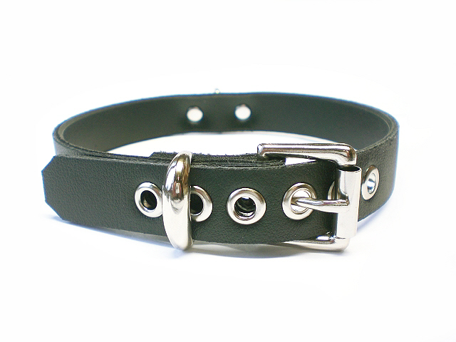 standard buckle - onyx black