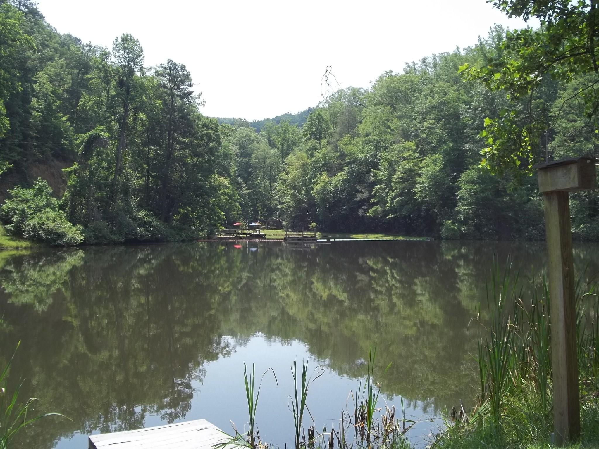 Lake Bob Justice