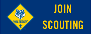 JOIN SCOUTING.png