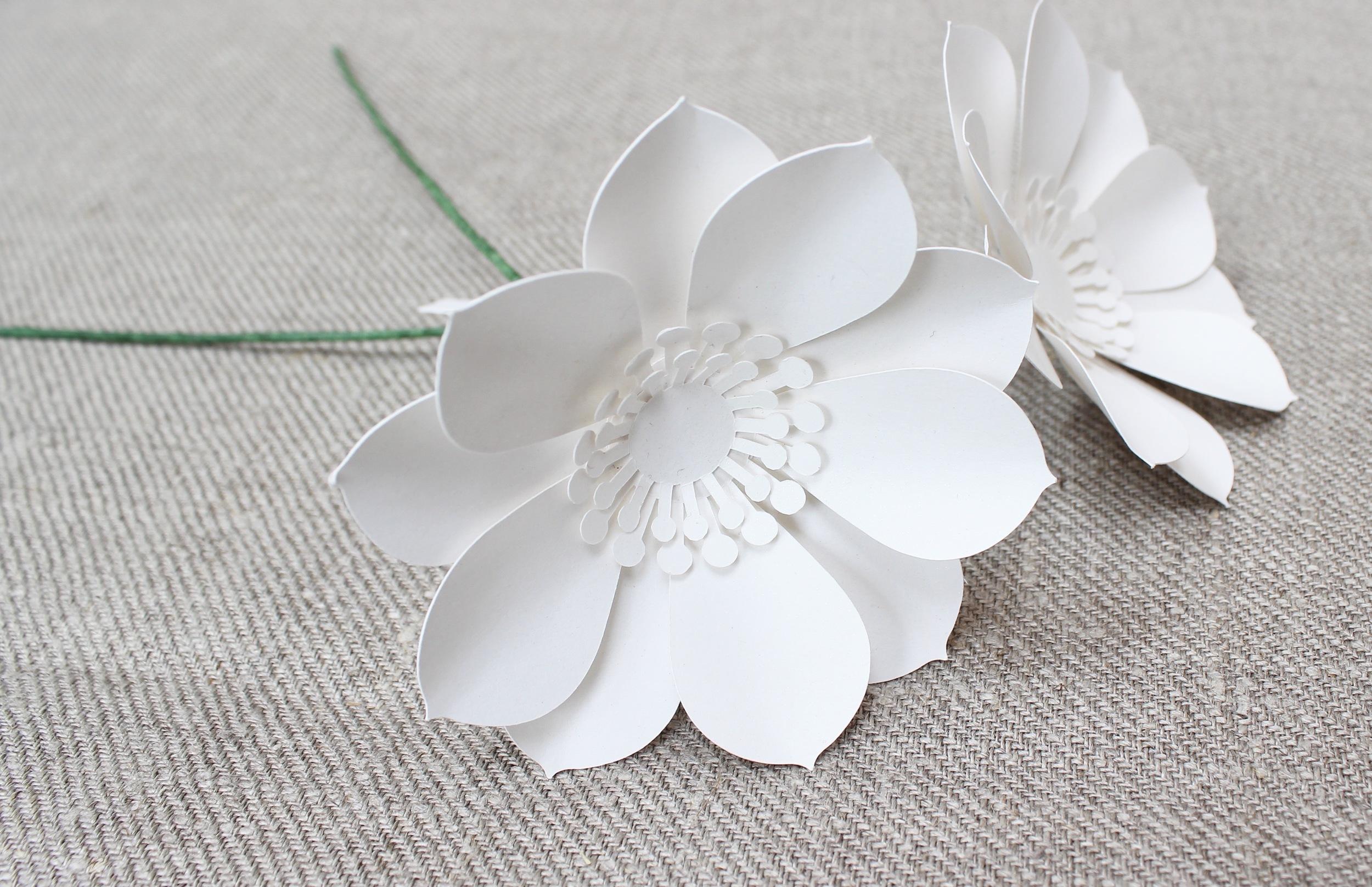 Paper flower on stem anenome