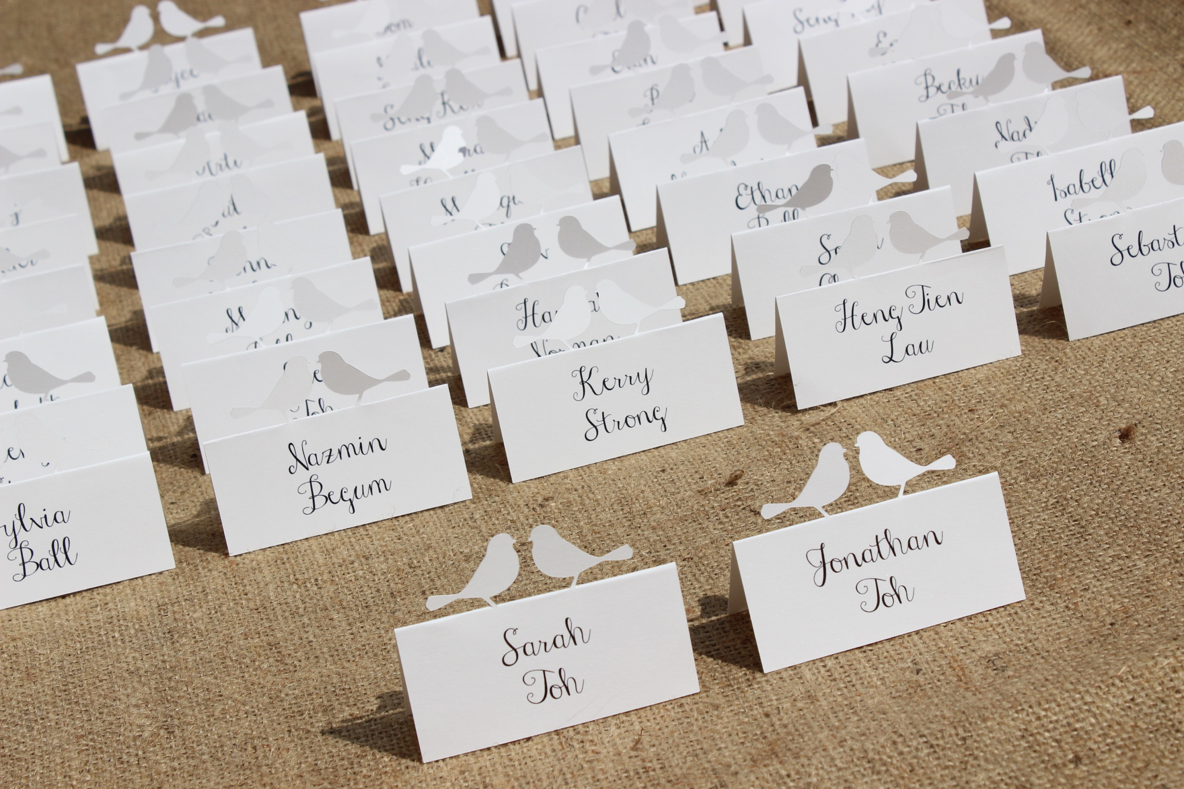 Robins name cards