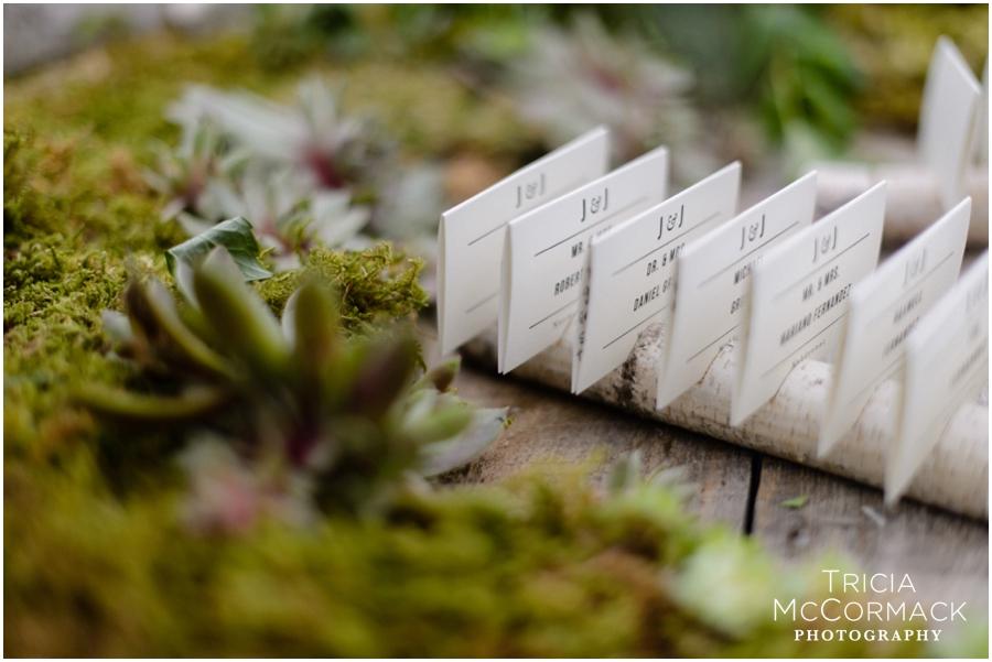 Mount-Wedding-Berkshires-Wedding-Photographer-Tricia-McCormack-Photography-WEB_0106.jpg