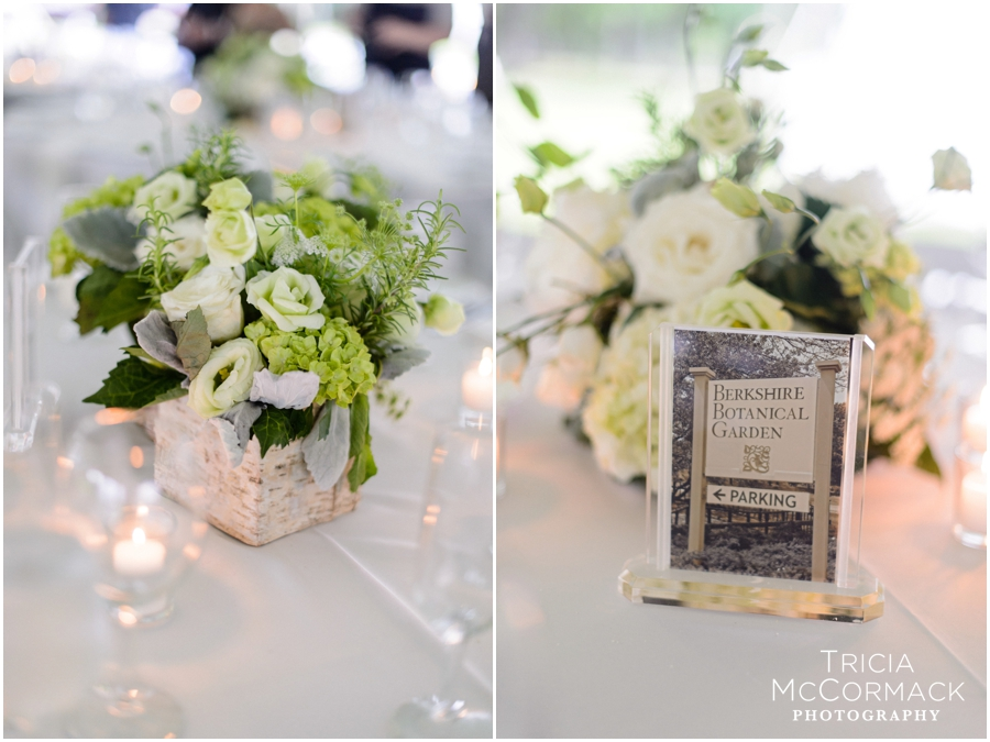 Mount-Wedding-Berkshires-Wedding-Photographer-Tricia-McCormack-Photography-WEB_0107.jpg