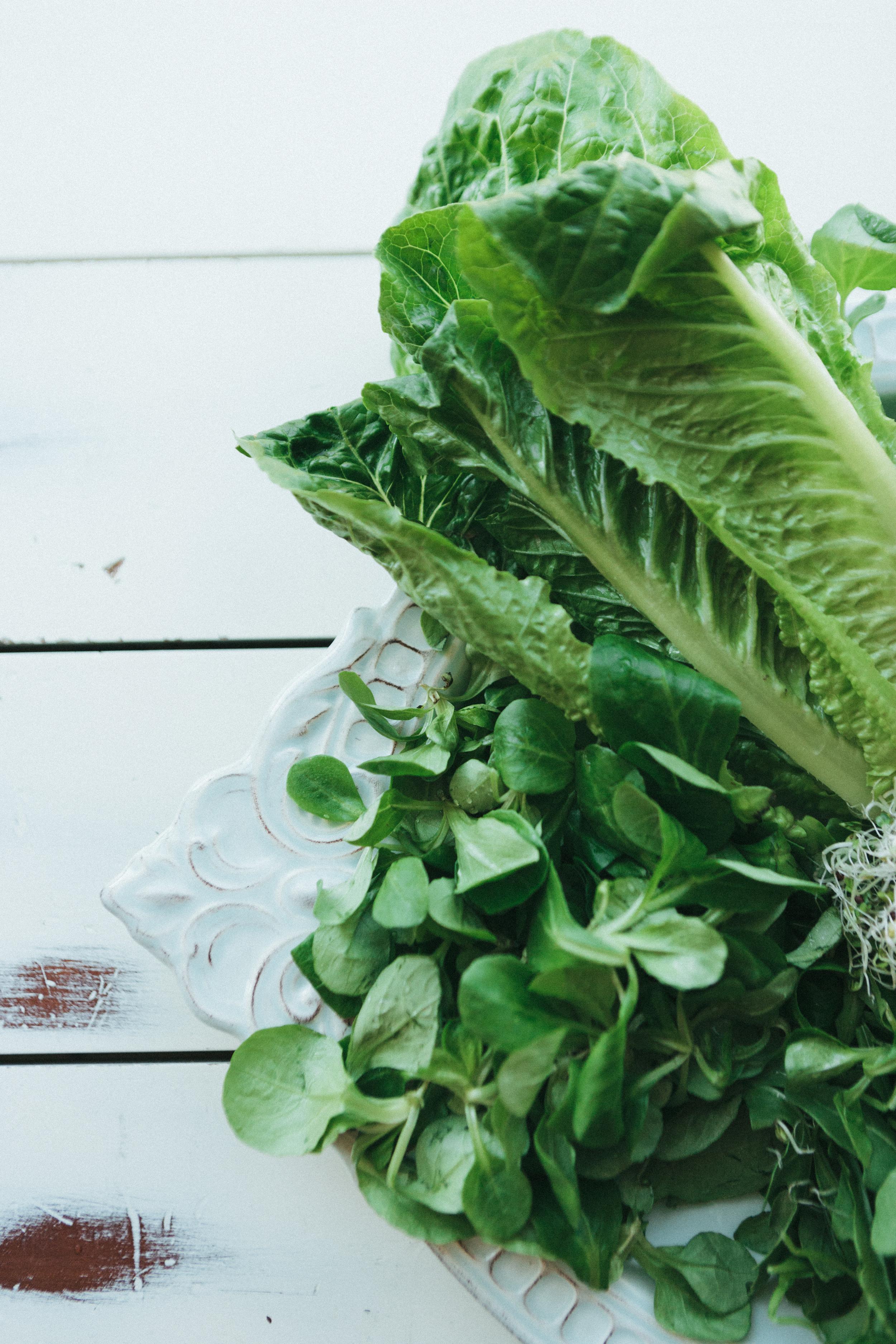 Salads-7.jpg