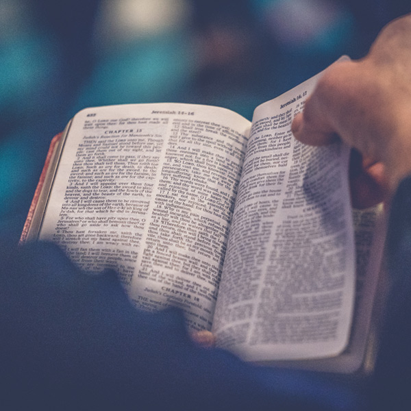 BIBLE EMAILS - Go deeper with God