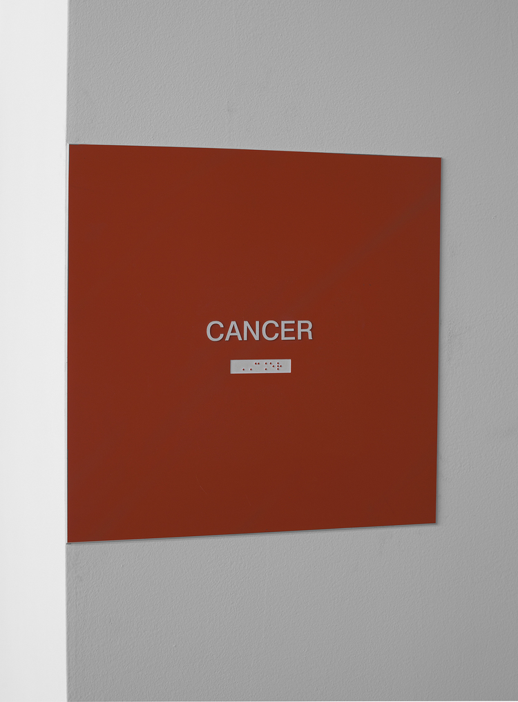 Match Made in Heaven (Cancer) 2013 Plastic sign and brail 12 x 12 inches