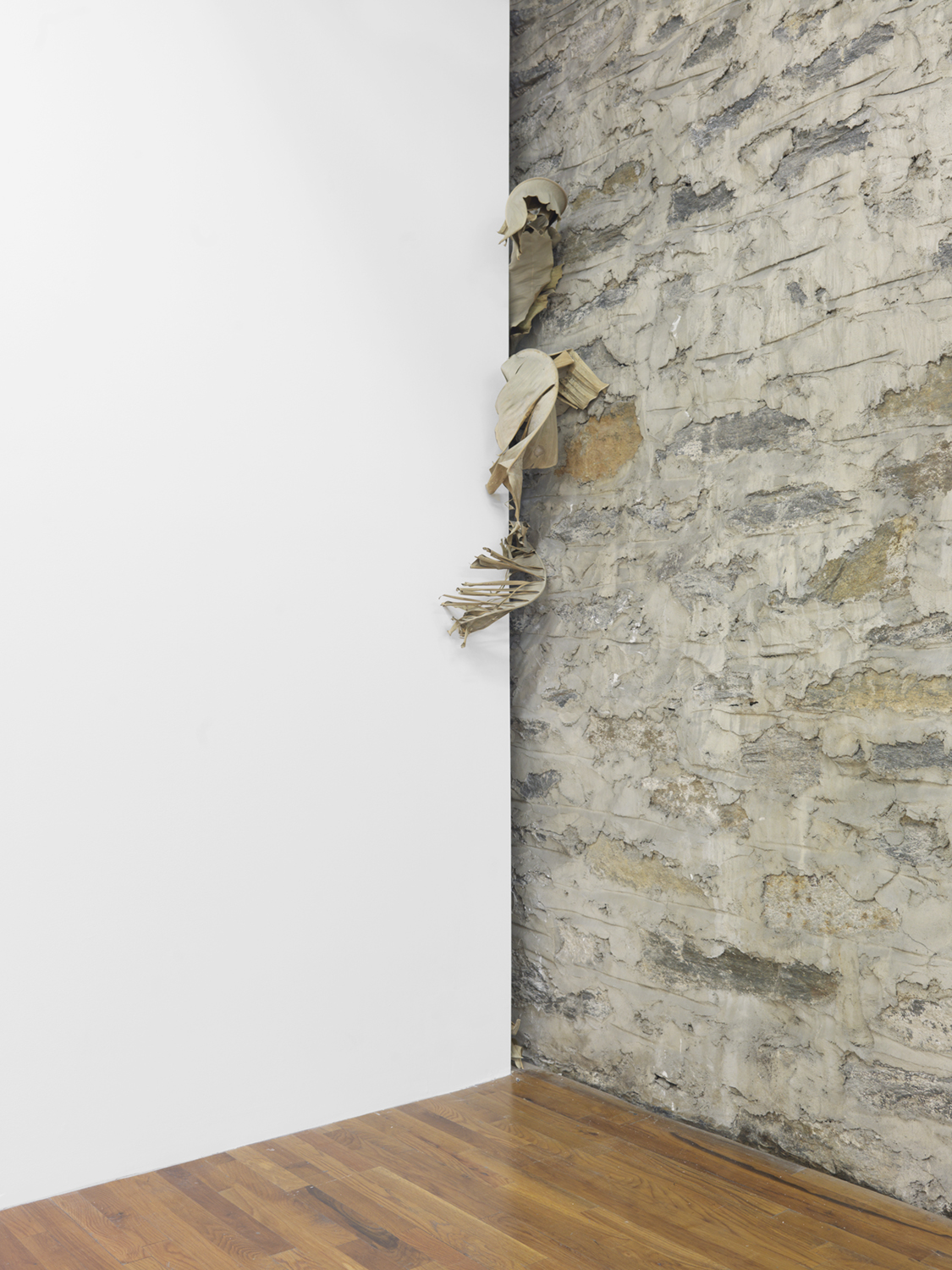 Every One Drops and Falls  2014 Miami banana leaves Dimensions variable