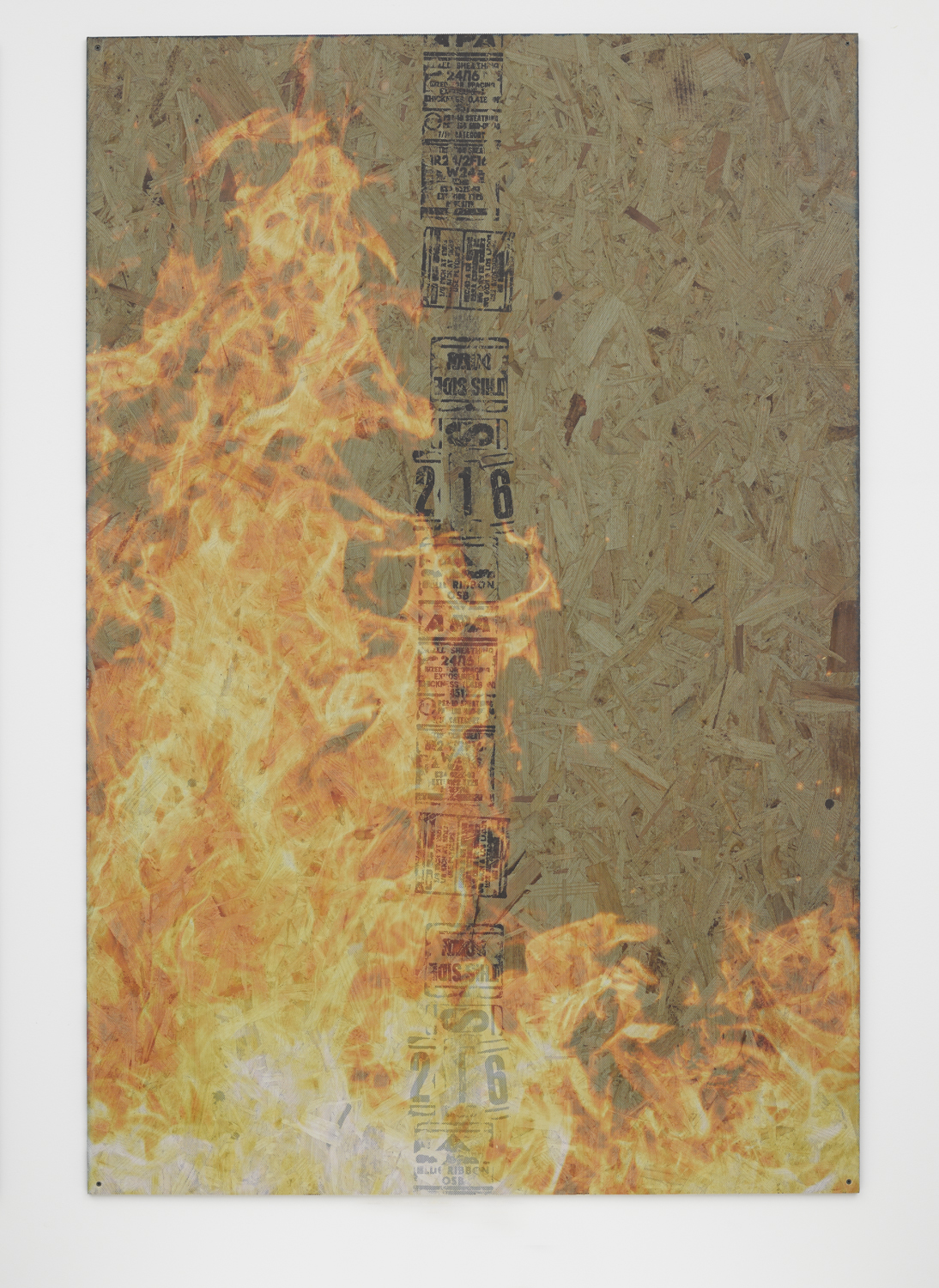 Taco Bell's Burnt Menu   2014   OSB, ink jet printed on perforated vinyl, matte medium   72 x 48 inches
