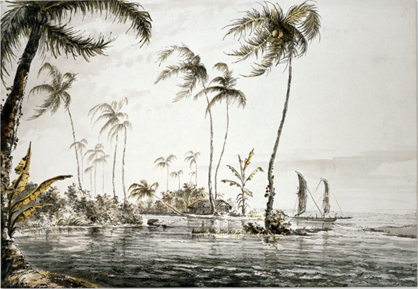 """View of Island of Otaheite  (Tahiti), William Hodges, Grey wash and watercolor, 368 x 539mm, 1773  Courtesy of Trustees of the British Museum  Back Inscription : """"A View in the Island of Otaheite from the Land looking towards the Reef & Sea, and which has much the appearance of the Low coral Reef Islands, the Plants a(re) Coco Nut Tree. & Plantain which are indigenous Drawn from Nature by W Hodges in Year 1773"""""""