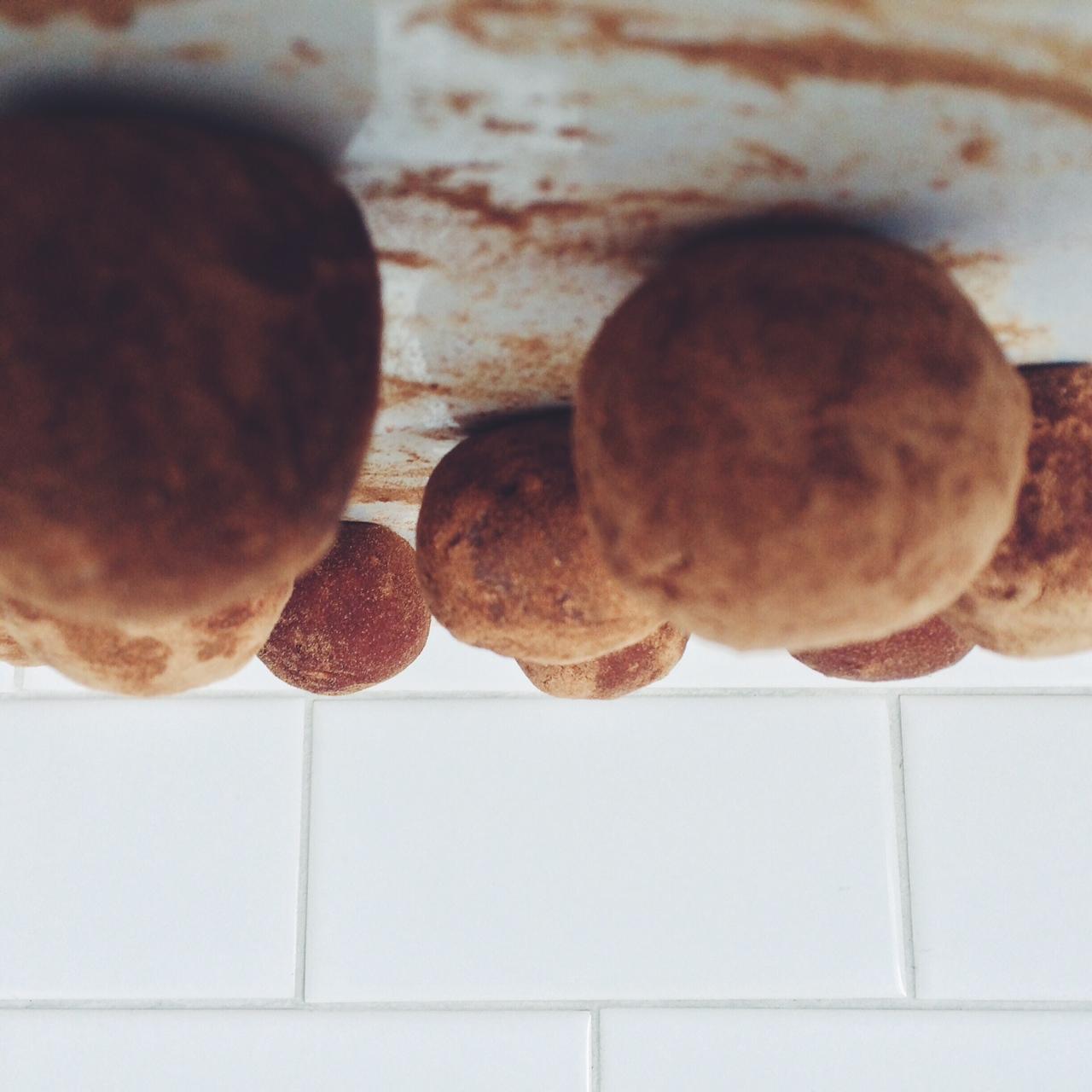 carob coconut truffles