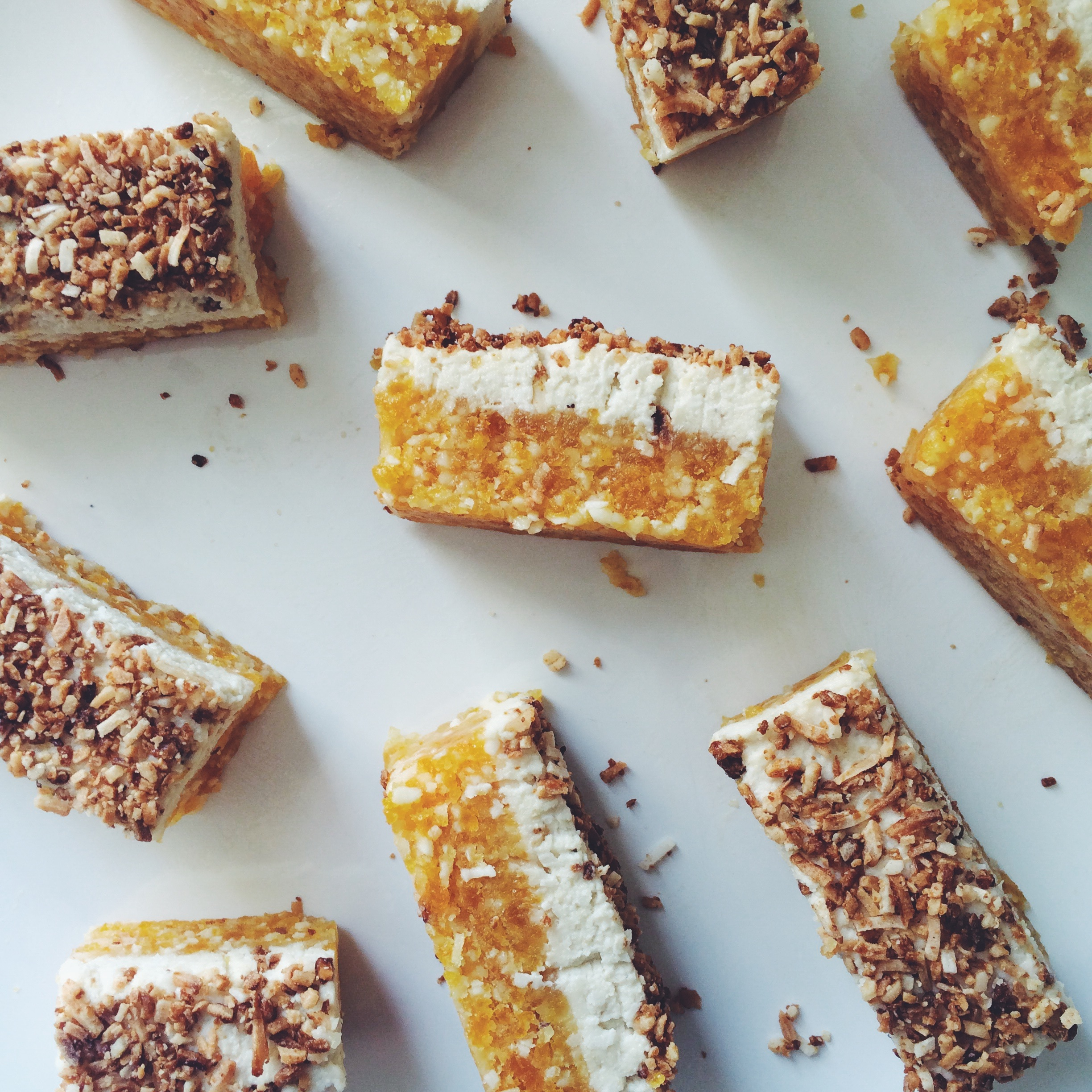 Apricot and Macadamia Raw Slice