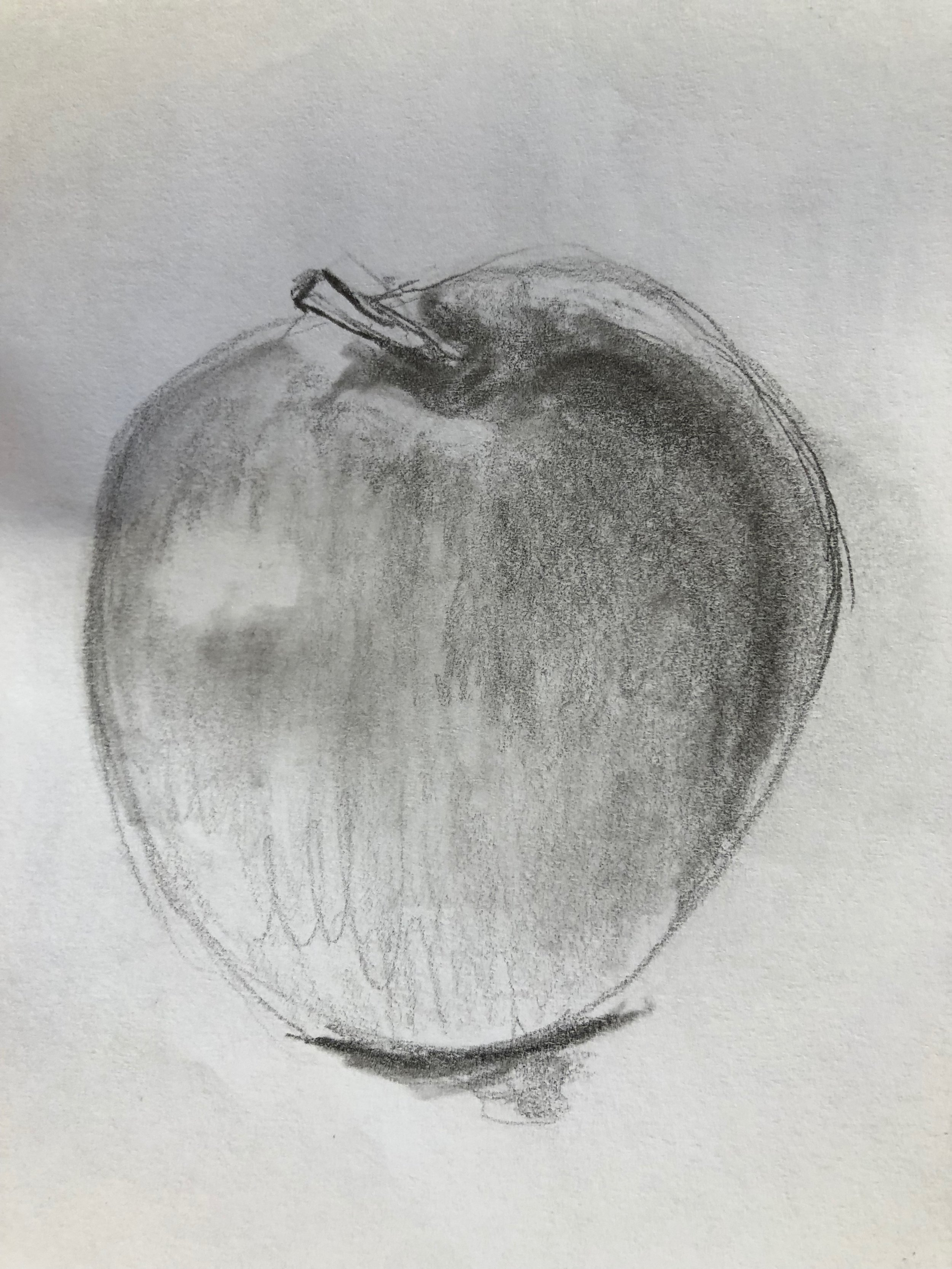 apple sketch.jpg