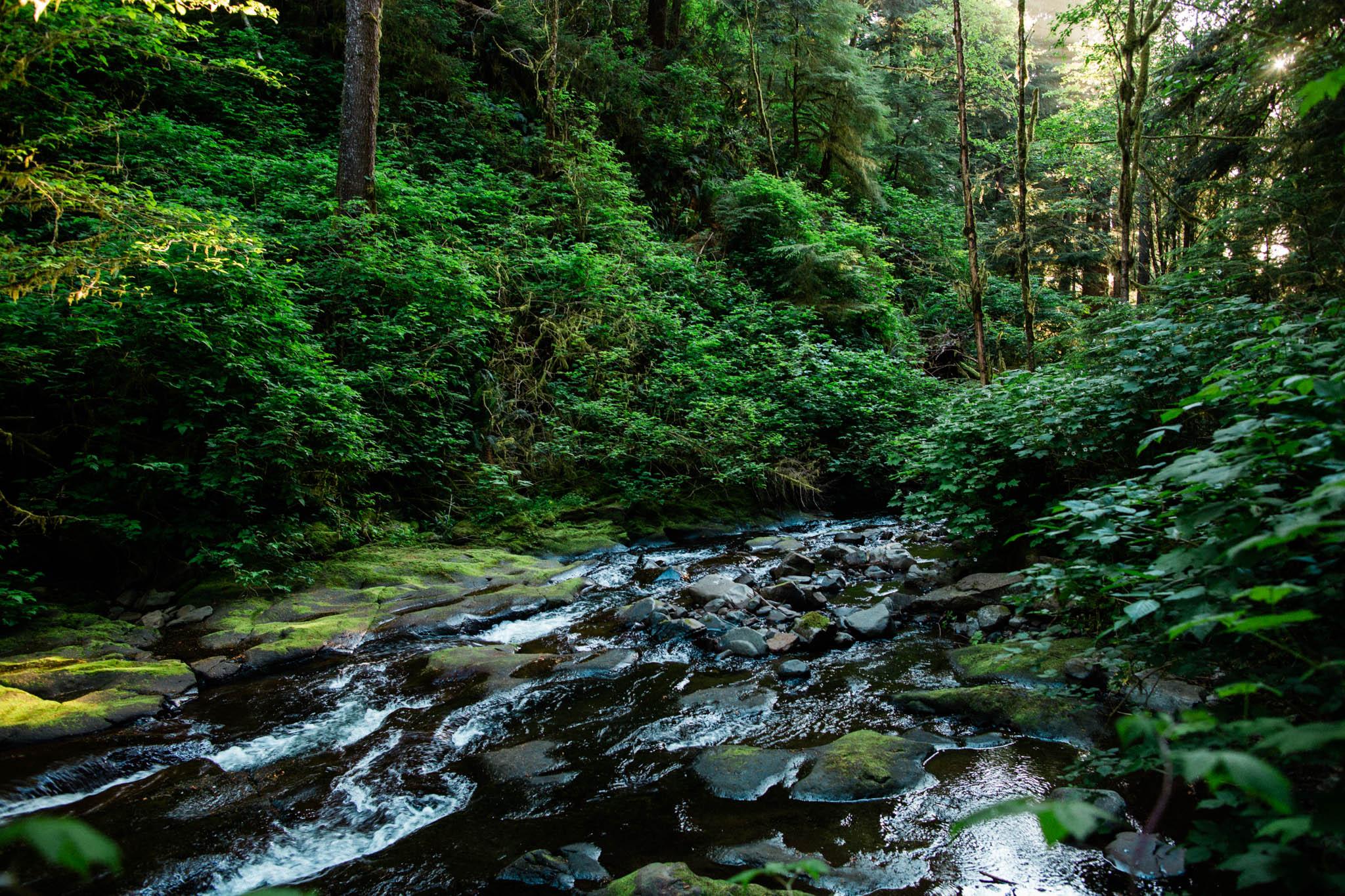 Oregon-Coast-0432.jpg