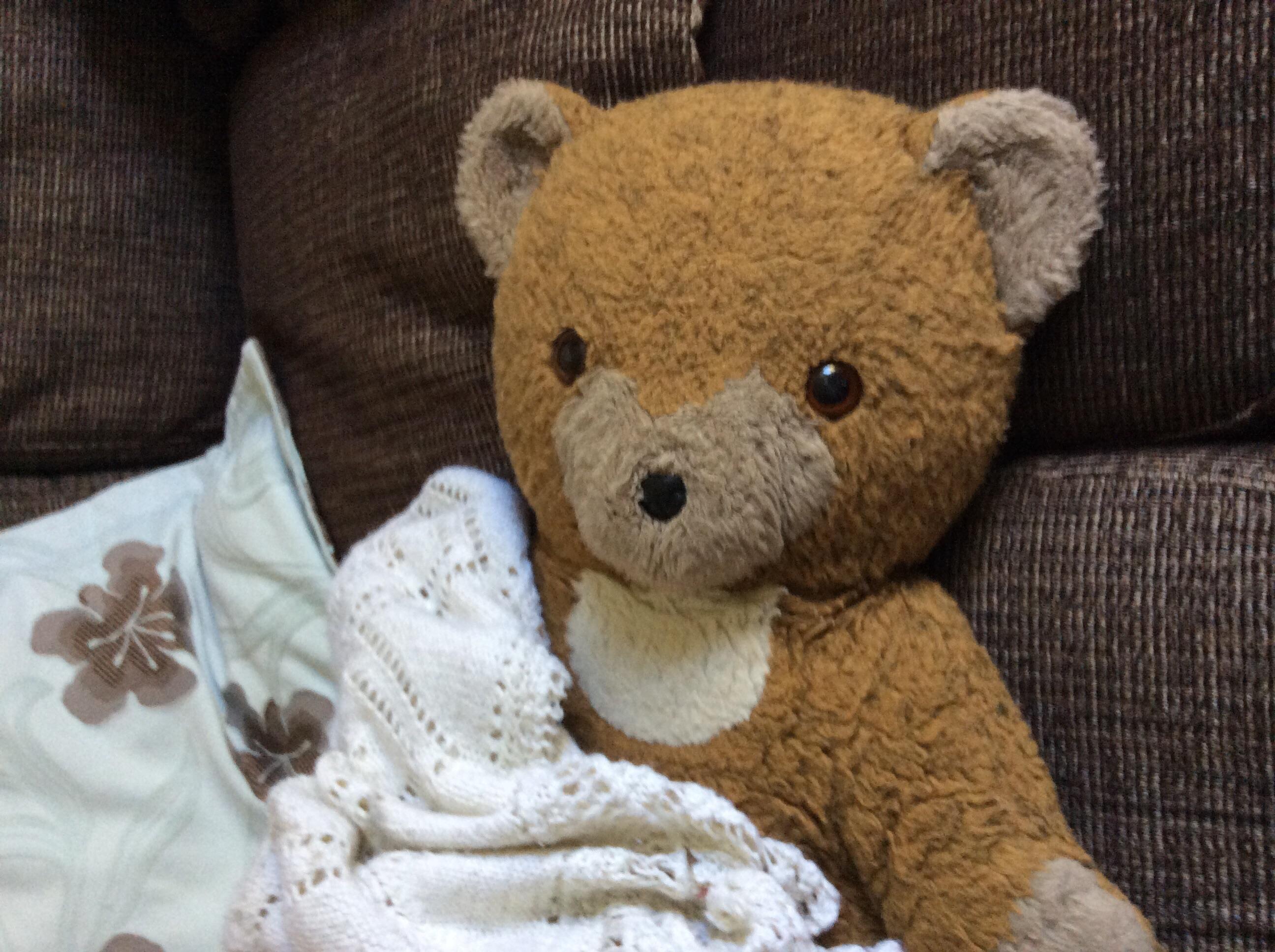 "Say hello to ""Grundy"", my son's teddy."