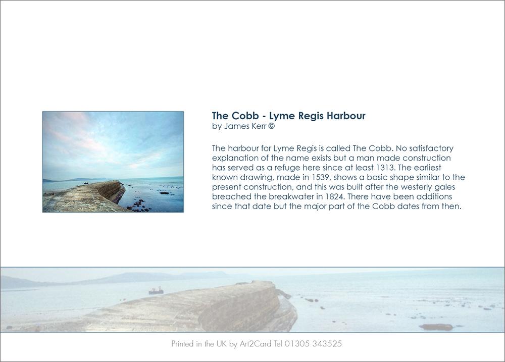 The-Cobb--Back.jpg