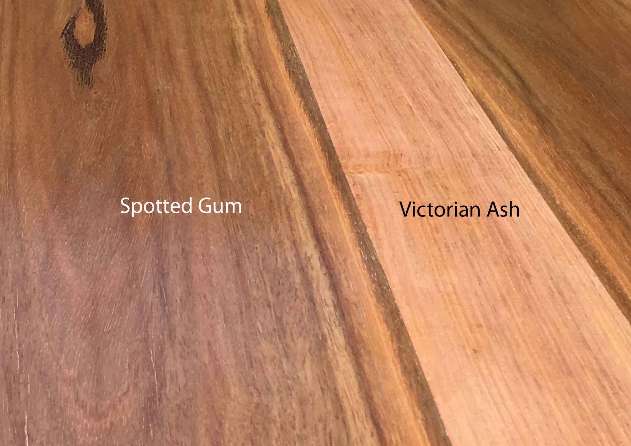 Spotted Gum and Victorian Ash
