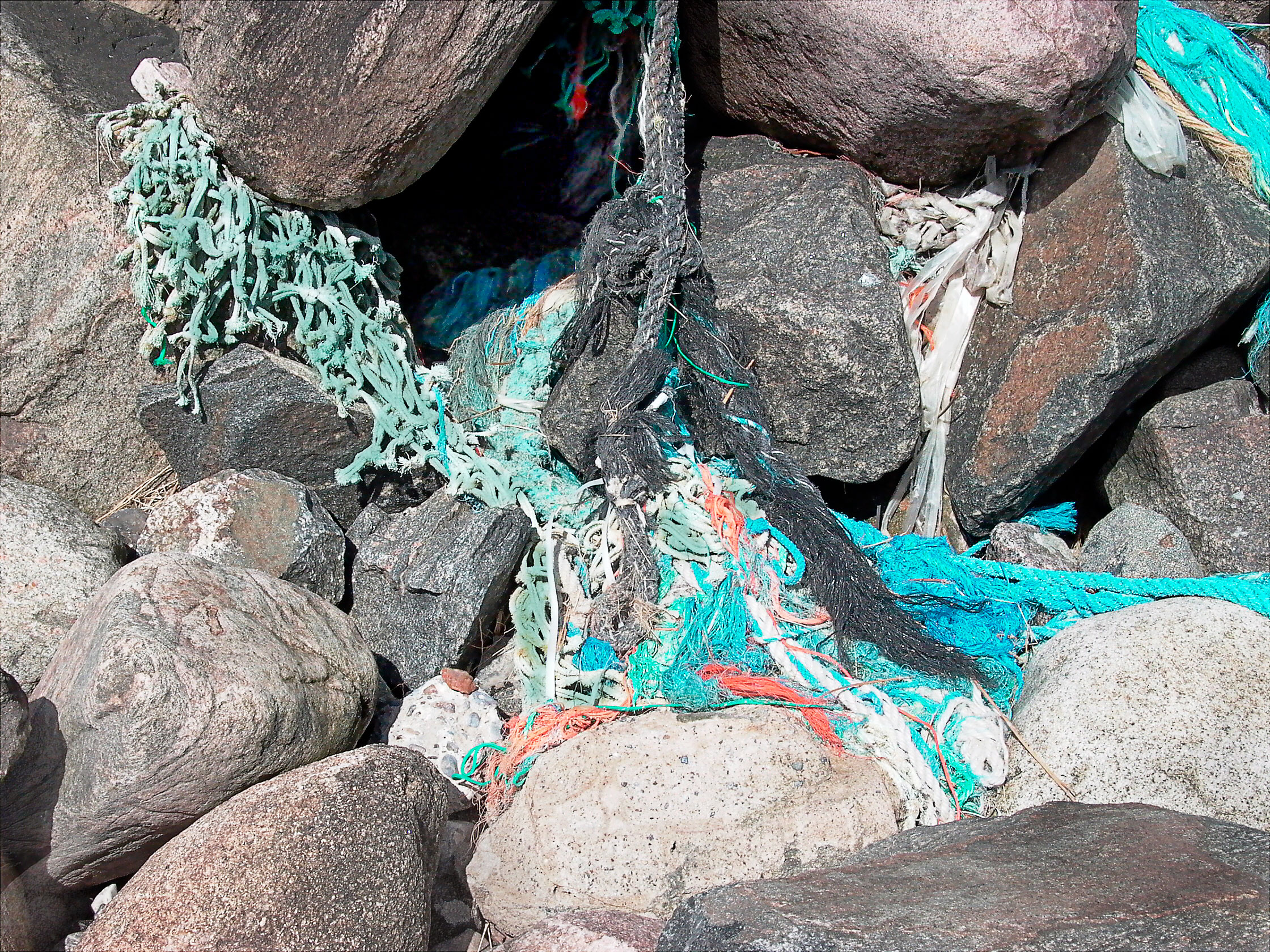 Wreckage #005  / Nr. Lyngby, Denmark / Spring_2007.