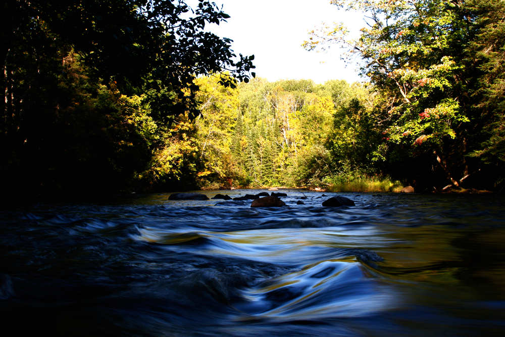 Local rivers are running great right now. Get out there and take in the late summer and early fall scenery.