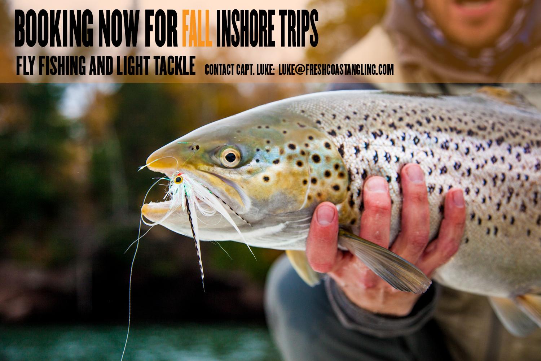 We're now booking Fall Inshore trips. Contact Capt. Luke: luke@freshcoastangling.com