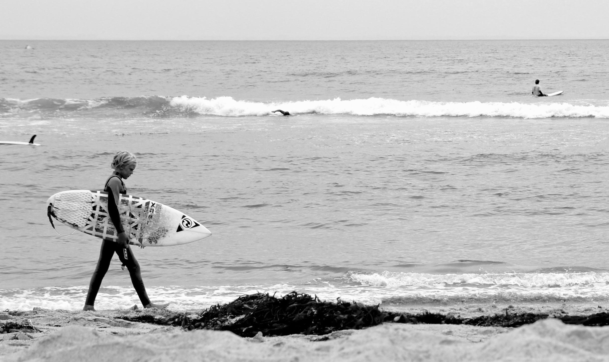 LIfe on the beach -