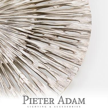 Pieter Adam