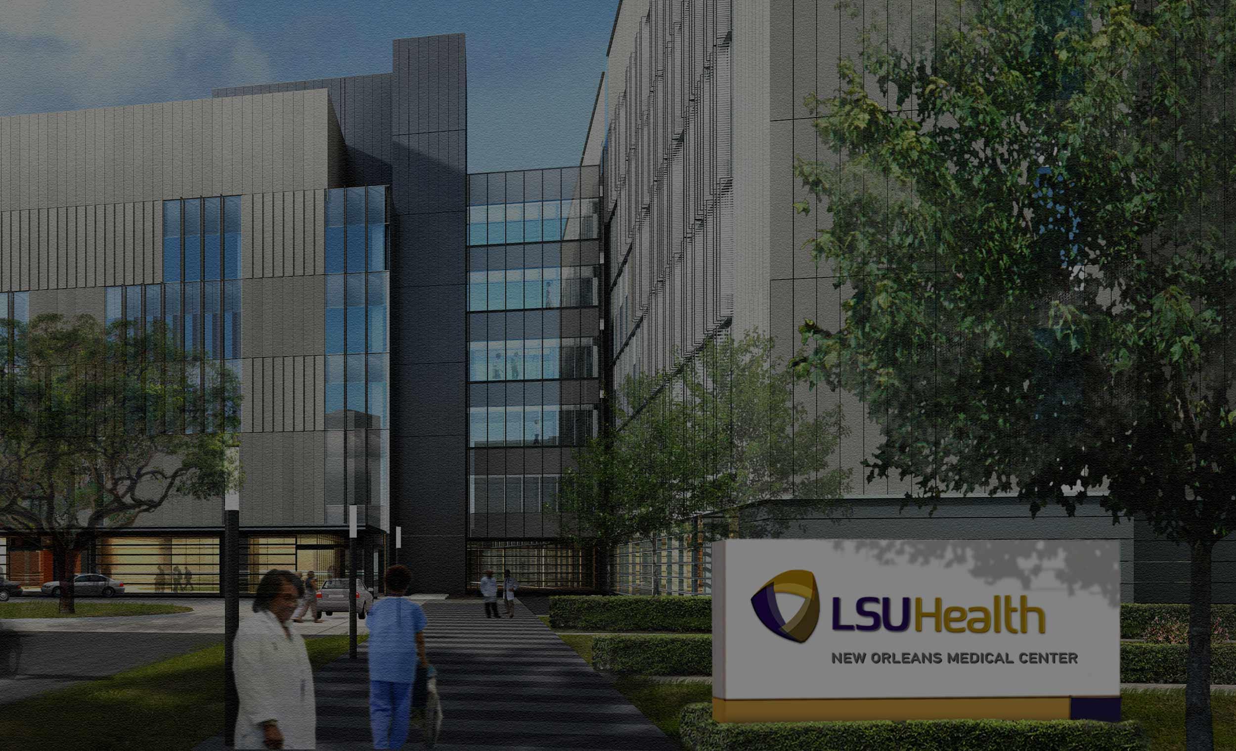 healthcare - LSU Health